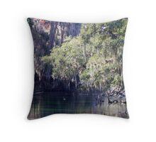 Moss At Blue Springs Throw Pillow