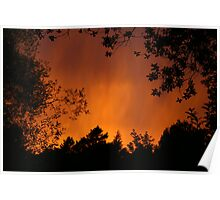 Mountain Lights - Leura Sunrise Poster