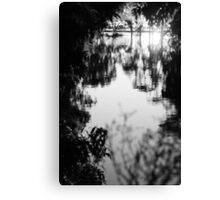 Grey Flood Canvas Print