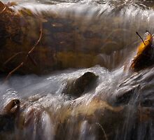 Spring Thaw by Michael  Dreese