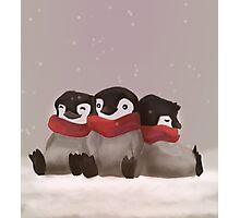 Three little penguins Photographic Print
