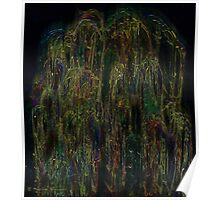 The beauty of the weeping willow Poster