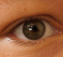 Eye, eye Captain. by Josef Pittner