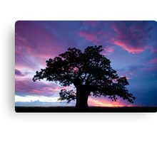 In all its Glory  Canvas Print