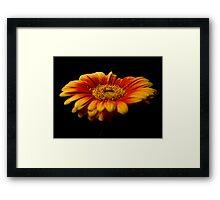 Floral Flames Framed Print