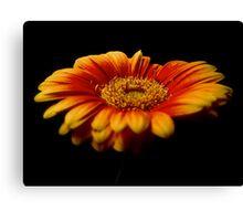 Floral Flames Canvas Print
