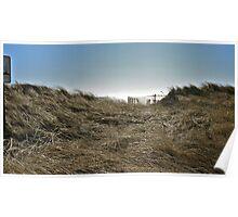 Winter Beach Grass - Series 2011 Poster
