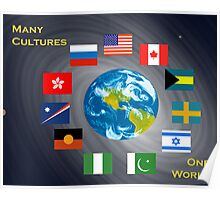 Many Cultures, One World Poster