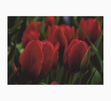 Vivid Red Tulip Garden Kids Clothes