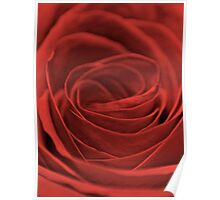 So Red The Rose Poster