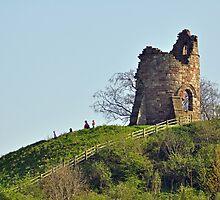 Tutbury Castle, Ruins by Rod Johnson