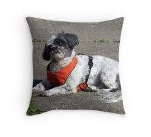Say,WHAT? Throw Pillow