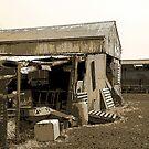 Ye Olde Farm Barn by sarnia2
