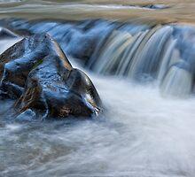 Gloucester River by Su Walker