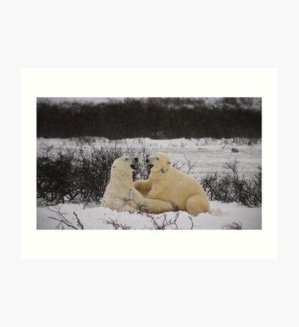 Just a couple polars telling jokes Art Print