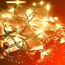 Fairly Fairy Lights by Charlistar