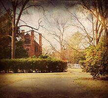 Palmer Marsh House, Bath, NC by Lea  Weikert
