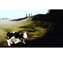 New born calf on Penshaw hill Photographic Print