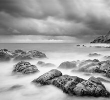 Howth Beach by Piotr Wargacki