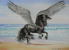 Friesian Pegasus by louisegreen