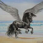 Friesian Pegasus by louisegreen