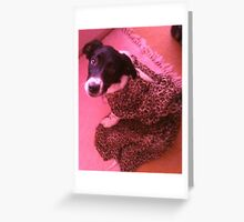 Ringo The Puppy Wonder Greeting Card
