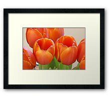 Loving Orange Framed Print