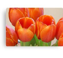 Loving Orange Canvas Print