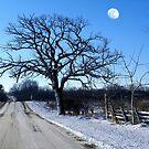 Winter Moon by wiscbackroadz