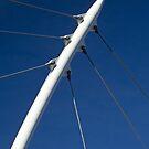 Cable Stay Bridge Support (Denver, Colorado) by Brendon Perkins