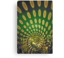 Spiraling Down the Rabbit's Hole Canvas Print