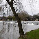 Kells Bridge & Kings River,Kells,Co. Kilkenny,Ireland. by Pat Duggan