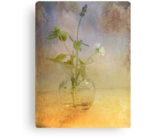 Lavender and Blue Canvas Print
