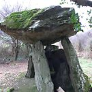 Gaulstown Dolmen,,Tramore,Co. Waterford,Ireland. by Pat Duggan