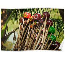 Musical Instrument Bangladesh Poster