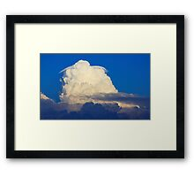 cotton ball Framed Print