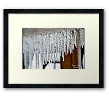Tapering Spike Framed Print