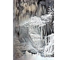 Ice Age Photographic Print