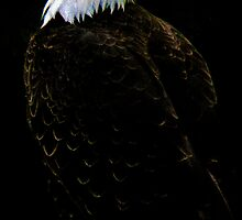 """Watchful Eye of Freedom"" by Robert Burdick"