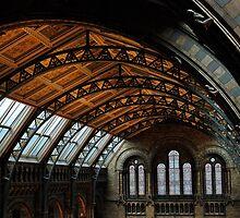 Natural History Museun by Sunsetsim