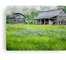 Bluebonnet Farm Canvas Print