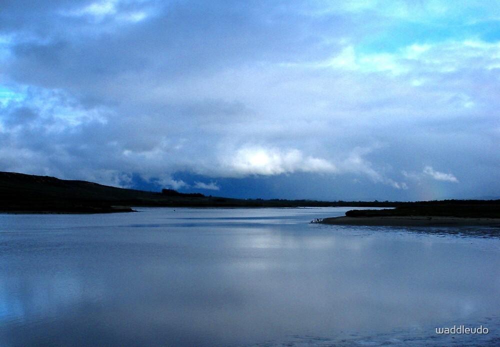 """""""Santa Ynez River"""" by waddleudo"""