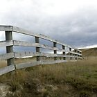 Rustic fences in New Zealand by Leoni South