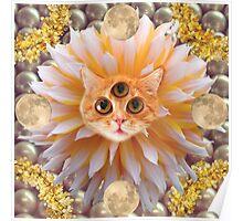cat god Poster