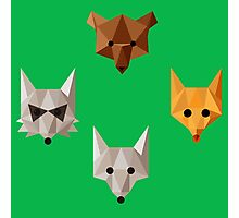Geometric animals Photographic Print