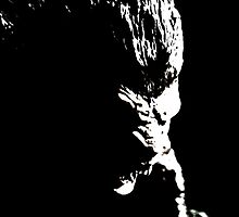 Bram Stoker's Dracula - Werewolf by d-s-ramos