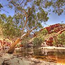 Ormiston Gorge by Steve Bullock