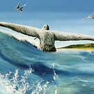 """""""Catching in a Wave"""" oil painting of pelicans  by James  Knowles"""