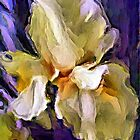 Painted Iris by suzannem73