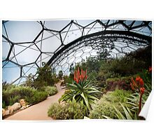 Eden Project 2 Poster